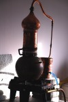 alambic copperstill